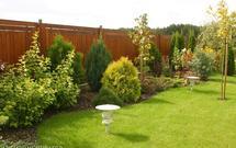 Prace w ogrodzie od A do Z. Jakie prace należy wykonać w czerwcu?