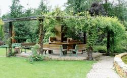 Jak urządzić ogród domowy?